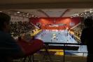 Superfinále Extraligy 2016: TJ AVIA Čakovice vs SK Karlovy Vary_4